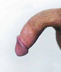 down curved penis